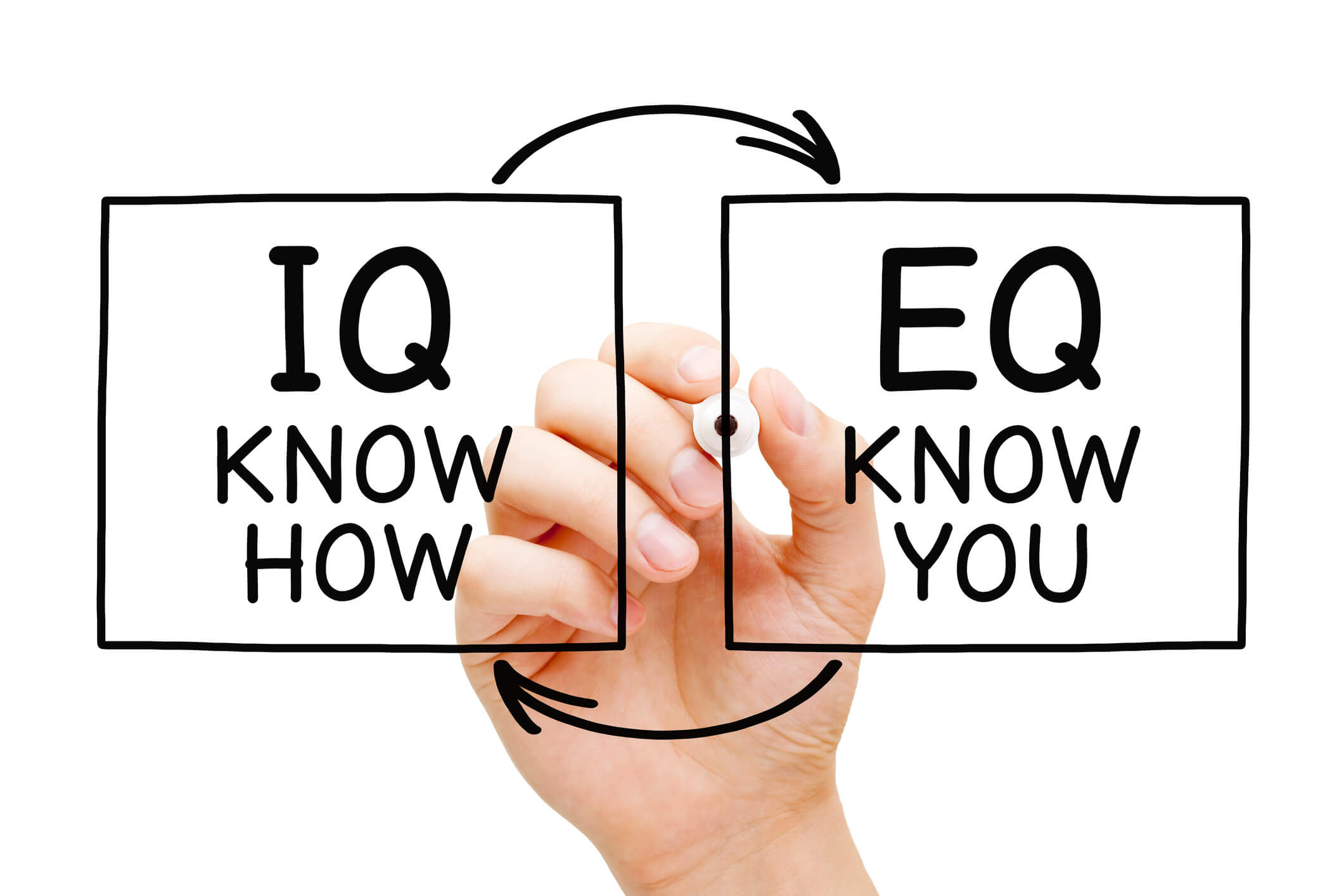 "Hand writing IQ Know How and EQ Know You with marker on transparent wipe board isolated on white. Intelligence quotient and Emotional intelligence quotient concept.""n"